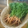 Fresh harvested carrots during Farm to Fork field trip to MAʻO Organic Farms