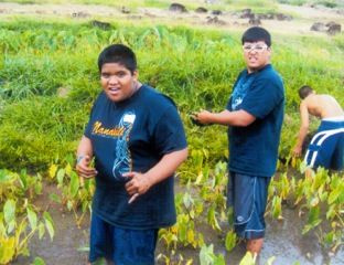 Field Trip to Kaʻala Farm