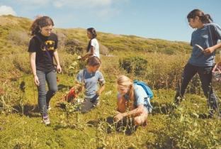 Destinations : KHF Field Trips : Kokua Hawaii Foundation